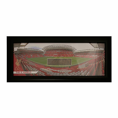 Liverpool FC  LFC Glass Panoramic With Grass Official