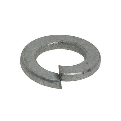 Spring Washer M12 (12mm) x 21.1mm x 2.5mm Metric Flat Section HDG Galvanised