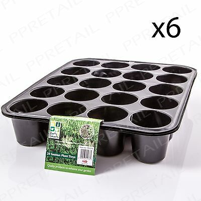 6 x BEDDING PACK 20 CELL INSERT Strong Plastic Tray Growing Seed Bulb Cuttings