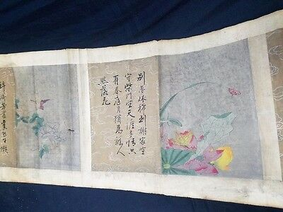 Very Long Old Chinese Wall Hanging Scroll Hand Painting Flowers PP100
