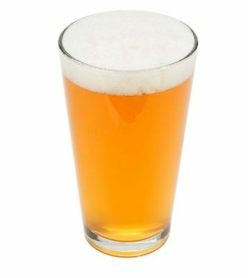 48 Ct - 16 oz Tall Pint Glass Commercial Beer Drink Mixing Restaurant Barware