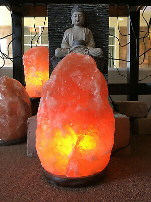 Himalaya Natural Ionic Rock Crystal Salt Lamp Air Purifier 2~24LBS FREE SHIPPING