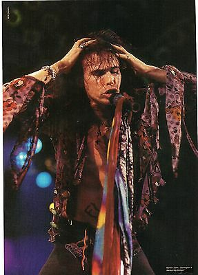 Aerosmith                        Poster    / Picture (MN 31 )