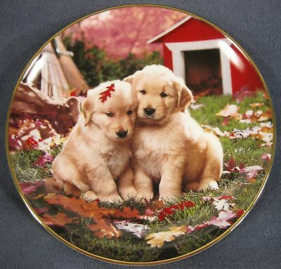 Royal Doulton Fall In Love Collector Plate Don Scarlett Franklin Mint Puppies