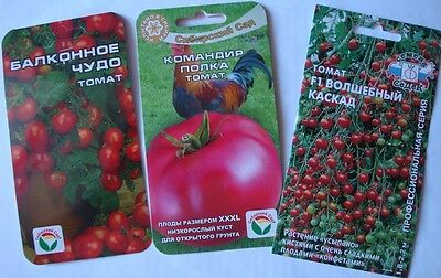 Varieties of Tomato seeds from Siberia
