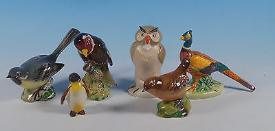 Beswick 6 Birds Pooh Owl Penguin 1st Ver Wren Goldfinch Pheasant Grey Wagtail