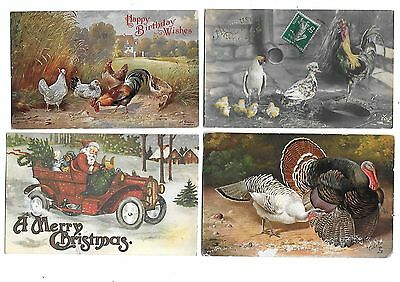 LOT 17 Artist Drawn Early Animal Postcard Poultry Pig Greetings Duck Hen Cock