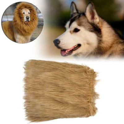Costume Pet Lion Mane perruque Grand Chien Vêtements Fancy Dress Brun clair M AH