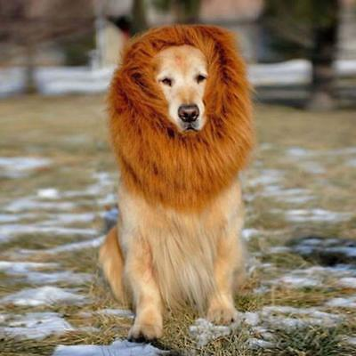 Costume Pet Lion Mane perruque Grand Chien Vêtements Halloween Fancy Brun S AH