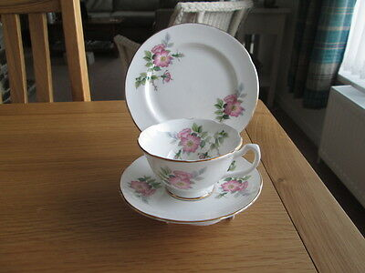 Vintage Royal Grafton  Floral Cabinet Trio  (Tea Cup & Saucer And Plate)