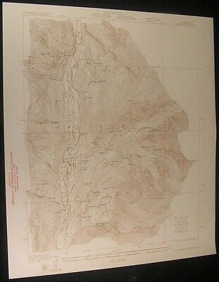 Rico Mining Colorado Deadwood Gulch 1930 vintage USGS original Topo chart map