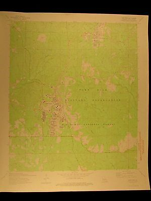 Louisiana Fort Polk Vernon Parrish 1974 vintage USGS Topo color chart map