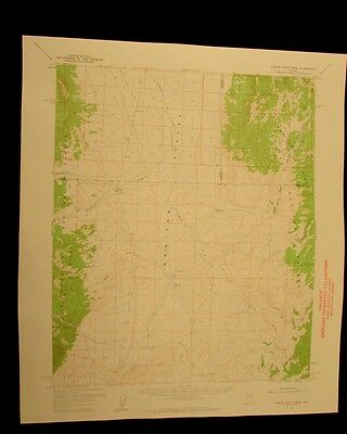 Dianas Punch Bowl Nevada 1962 vintage USGS Topographical chart map
