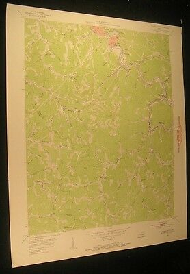 Hazard South Kentucky Daley Viper 1956 vintage USGS original Topo chart map