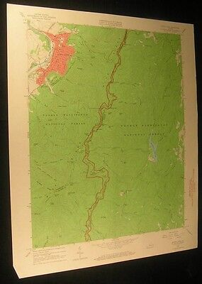 Buena Vista Virginia Love Lady Creek 1967 vintage USGS original Topo chart map