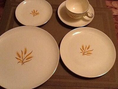 Vintage,Taylor Smith Taylor,Golden Wheat Pattern Versile,Gold Rim,5piece setting