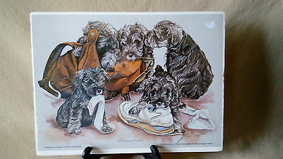 Darlene Wilson Miniature Mischief Schnauzer Print LE 1993 Signed 15/300 Sold Out
