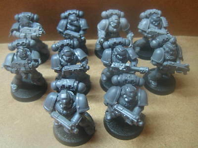 Warhammer 40k ++ Space Marine Tactical Squad (3) ++