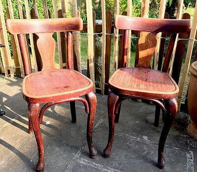 Lovely Pair Of Rare Design Thonet Antique  Bentwood Chairs