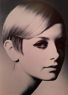 Twiggy 1960S Modelling A4 Poster Picture Print Art