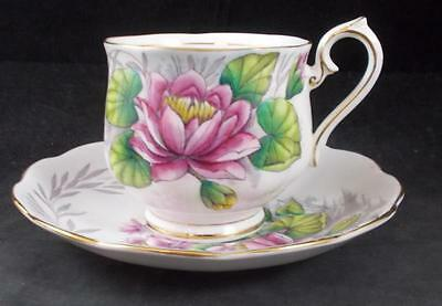 "Royal Albert FLOWER OF THE MONTH Older Hampton Cup & Saucer ""Water Lily""  GREAT"