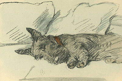 Scottish Terrier Dog SLEEPING 1930's by Lucy Dawson LARGE New Blank Note Cards