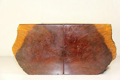 Vintage Matched Pair Of Pacific Redwood Burl Bookends Souvenir Original Tag