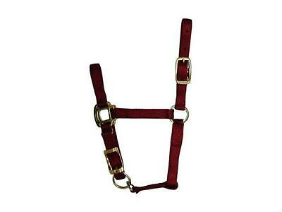 Hamilton 3Qaflrd Red Nylon Halter For Horse Foal
