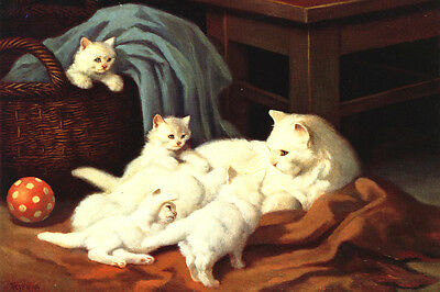 ANTIQUE White Cat w Kittens by Arthur Heyer 1910 - LARGE New Blank Note Cards