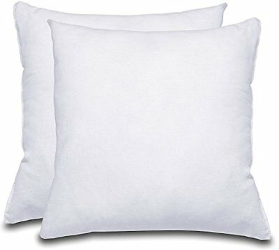18x18 Throw Pillow Insert.Decorative Pillow Insert 2 Pack White Square 18x18 Sofa Bed