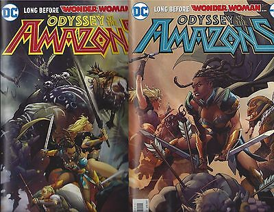 Odyssey Of The Amazons #1 & 2 Regular Covers Long Before Wonder Woman Dc Comics!