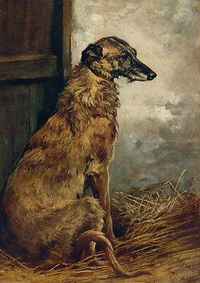 Scottish Deerhound Dog by John Emms Late 1800's ~ LARGE New Blank Note Cards