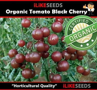 ORGANIC Tomato Black Cherry 20 Seeds Minimum. Vegetable Garden Plant. Very Tasty