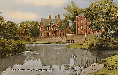 The River and Mill, Biggleswade, Beds, old postcard, unposted