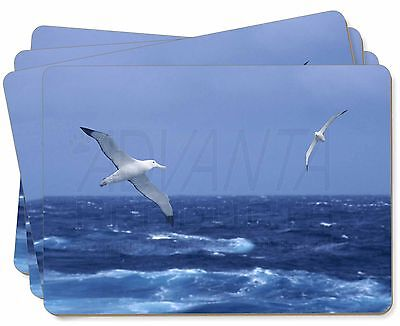 Sea Albatross Flying Free Picture Placemats in Gift Box, AB-106P