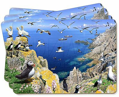Puffins and Sea Bird Montage Picture Placemats in Gift Box, AB-93P