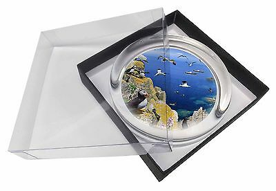 Puffins and Sea Bird Montage Glass Paperweight in Gift Box Christmas Pr, AB-93PW