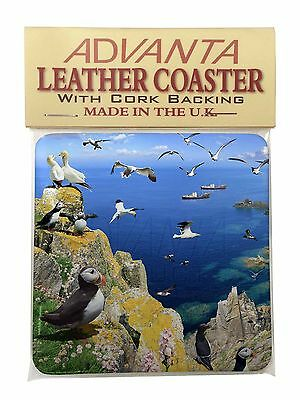 Puffins and Sea Bird Montage Single Leather Photo Coaster Animal Breed , AB-93SC