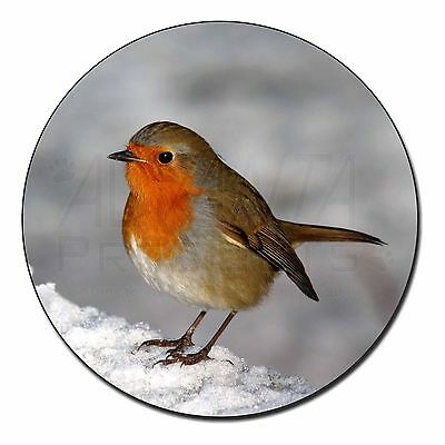 AB-R15SC Robin on Snow Wall Single Leather Photo Coaster Animal Breed Gift