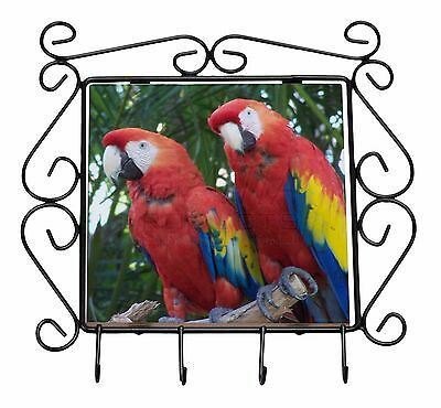 Macaw Parrots in Palm Tree Wrought Iron Key Holder Hooks Christmas Gi, AB-PA12KH