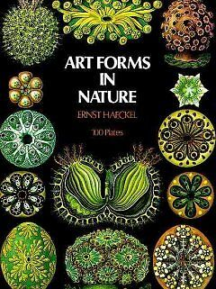 Art Forms in Nature-NEW-9780486229874 by Haeckel, Ernst