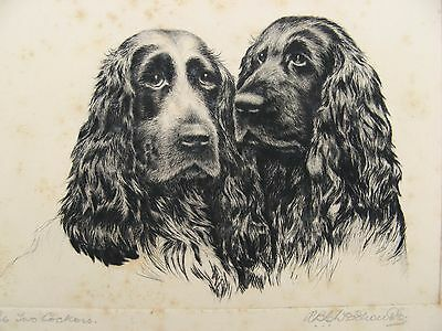 Signed Original RBE Woodhouse Etching Cocker Spaniels c.1920