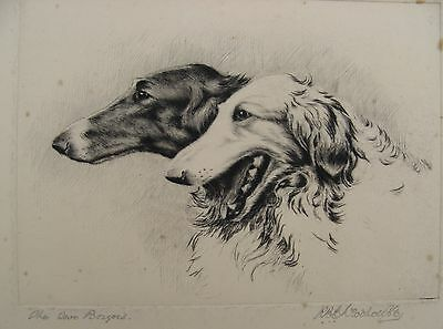 Signed Original RBE Woodhouse Etching two Borzoi c.1920