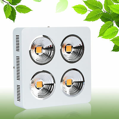 800W Full spectrum COB led grow light indoor greenhouse plants veg growth bloom