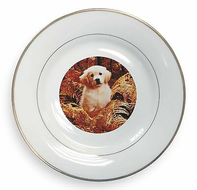 SOUL-32PL Piatti commemorativi Golden Retrievers 'Soulmates Gold Rim Plate in Gift Box Christmas Pre Porcellana e ceramica