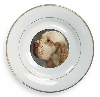 Clumber Spaniel Dog Gold Rim Plate in Gift Box Christmas Present, AD-CS1PL
