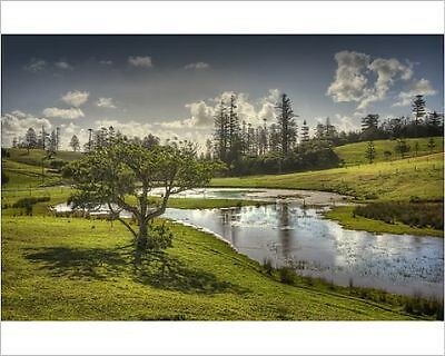 25x20cm Photo-Wetlands in the Mission valley, Norfolk Island, Sou-12474291-8105