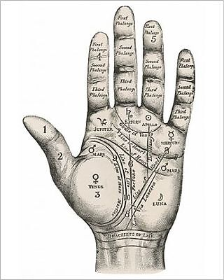 25x20cm Photo-Palmistry map of the hand -570381-8105