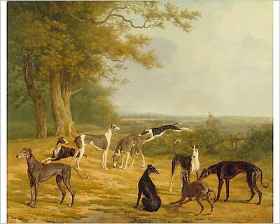 25x20cm Photo-Nine Greyhounds in a Landscape (oil on canvas)-12734536-8105