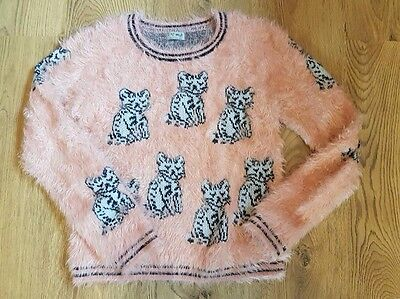 Next Cat Jumper Age 13 Years